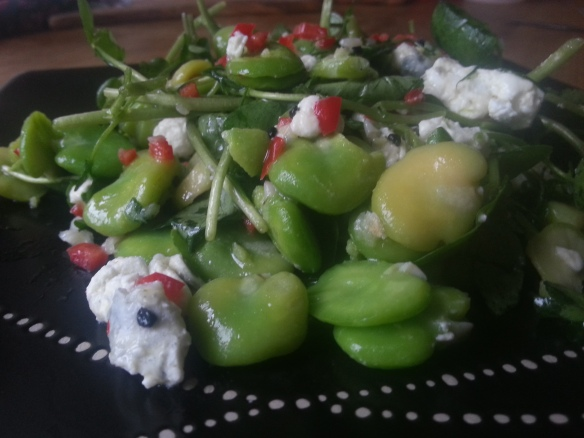 Broad bean and goats cheese salad