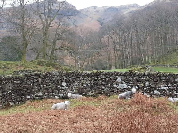 Silver How, Langdale, The Lake District