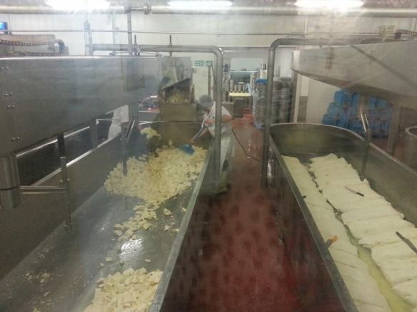 Wensleydale Creamery - where the magic happens