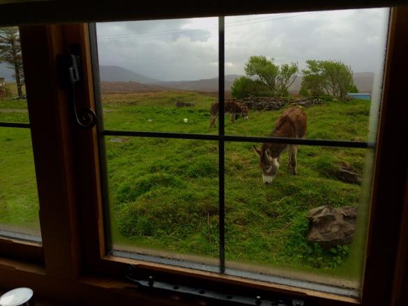 Skye Shepherd's Huts